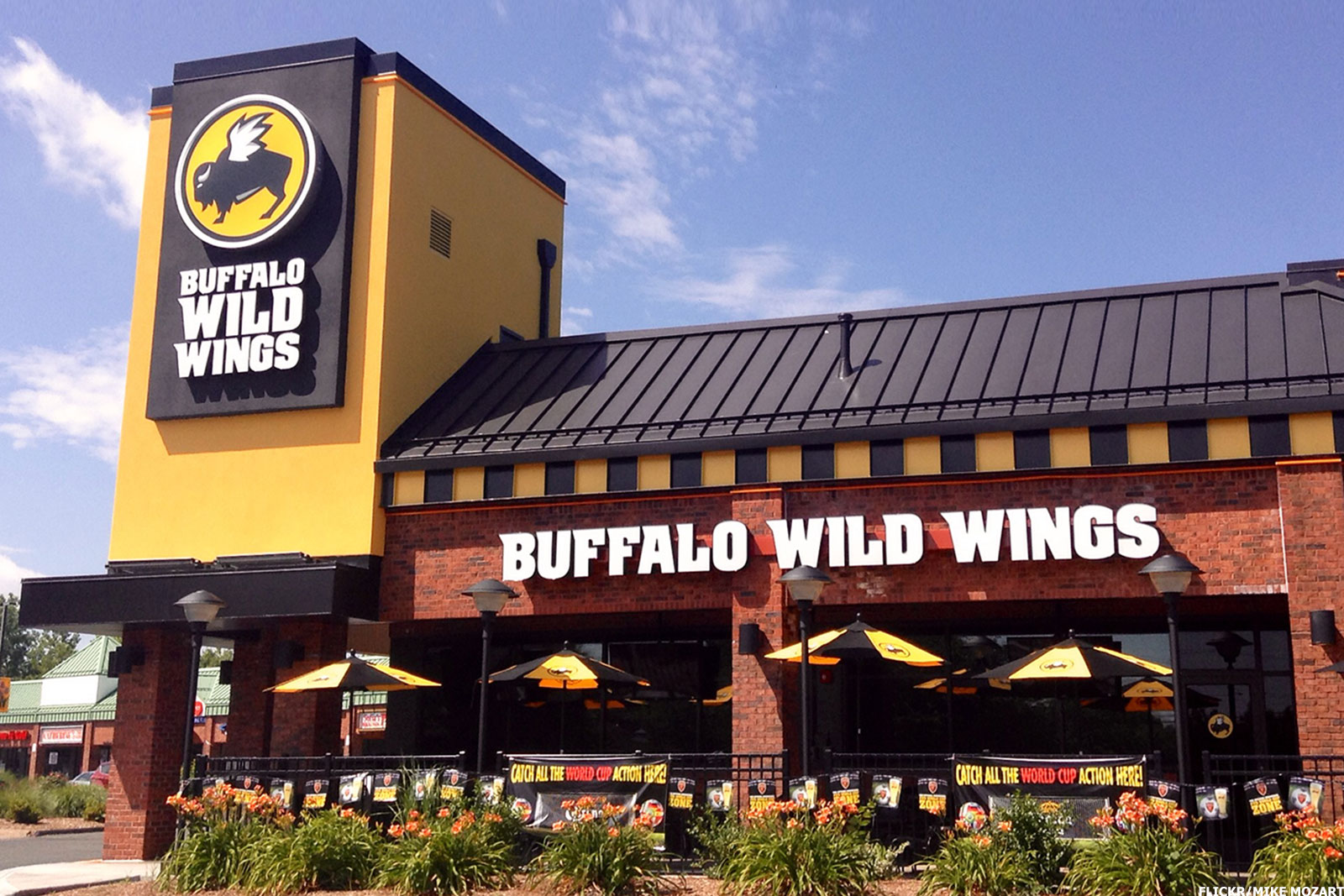 strategic audit buffalo wild wings Buffalo wild wings, inc - strategy, swot and corporate finance report, is a source of comprehensive company data and information the report covers the company's structure, operation, swot analysis, product and service offerings and corporate actions, providing a 360˚ view of the company.